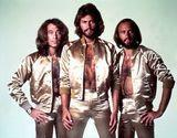 Bee Gees - Pop Liedtexte