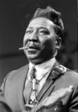 Muddy Waters - Blues Liedtexte